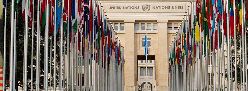 Criança e Consumo participa de sessão da ONU