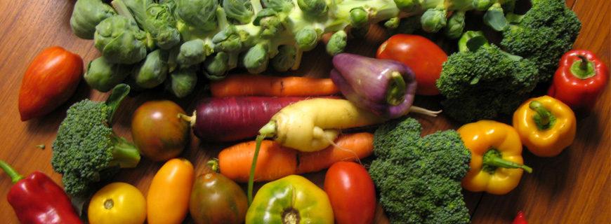Dia do Consumidor terá o direito à alimentação saudável como bandeira