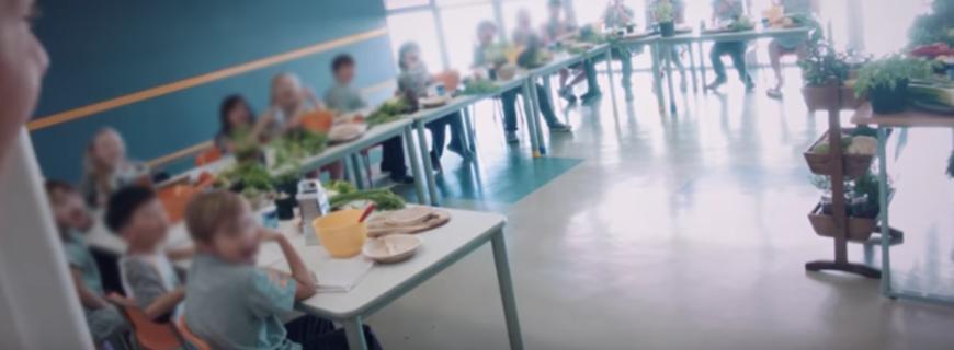 Sadia realiza ações mercadológicas em escolas no Brasil